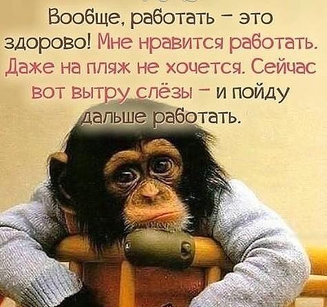 http://sg.uploads.ru/eumwa.jpg