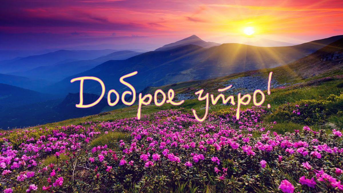 http://sg.uploads.ru/fvkce.jpg
