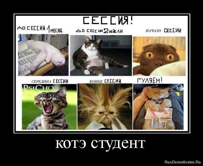 http://sg.uploads.ru/gA8Se.jpg