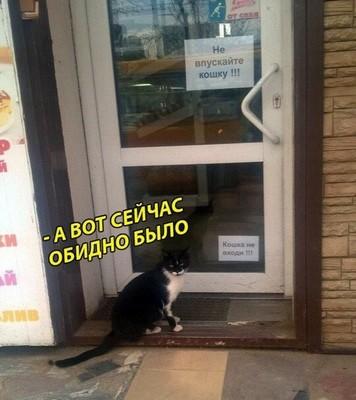 http://sg.uploads.ru/i1Ao2.jpg