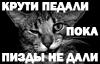 http://sg.uploads.ru/i32GU.jpg