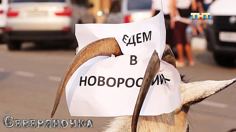 http://sg.uploads.ru/lGFMg.jpg