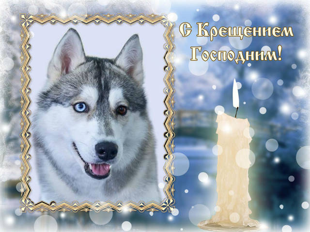 http://sg.uploads.ru/ocxjR.jpg