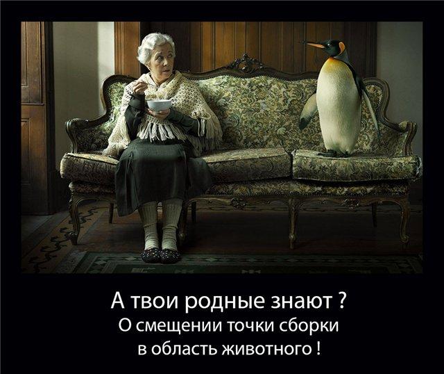 http://sg.uploads.ru/ohAgN.jpg