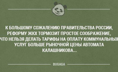 http://sg.uploads.ru/pHnsR.jpg