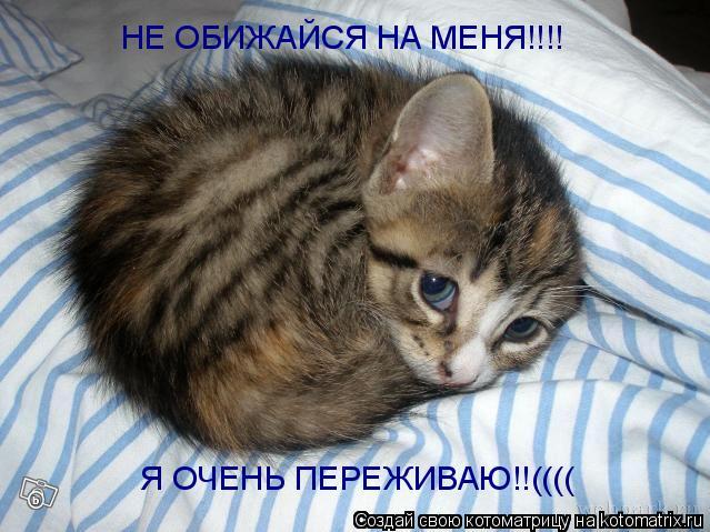 http://sg.uploads.ru/pxGub.jpg