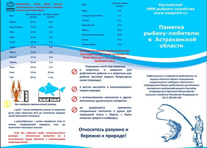 http://sg.uploads.ru/rIh6a.jpg