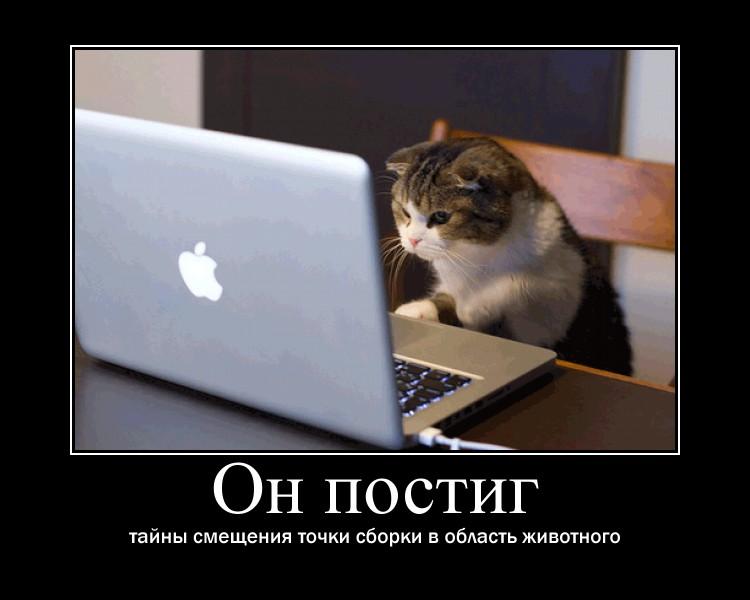 http://sg.uploads.ru/rceXl.jpg