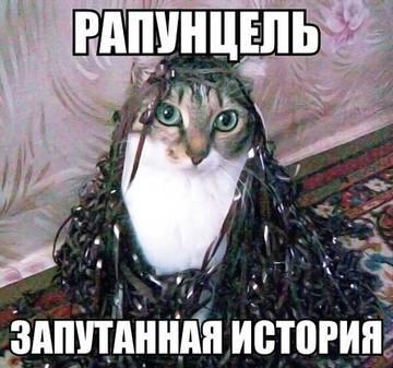 http://sg.uploads.ru/t/0diUk.jpg