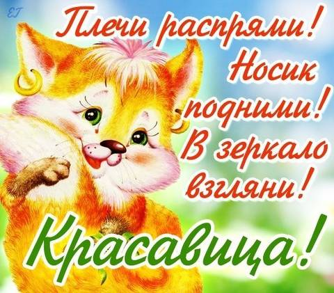 http://sg.uploads.ru/t/0ht61.jpg
