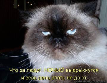 http://sg.uploads.ru/t/18Jsb.jpg