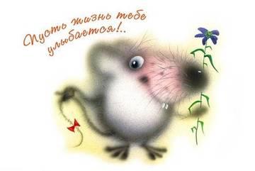 http://sg.uploads.ru/t/1ka4v.jpg