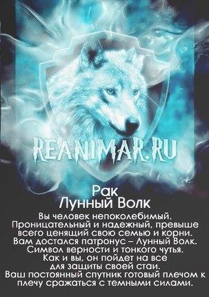 http://sg.uploads.ru/t/2VNaz.jpg