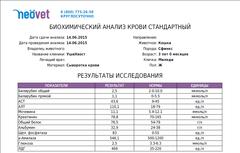 http://sg.uploads.ru/t/2Z46A.png