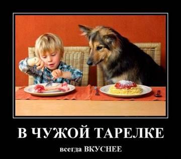 http://sg.uploads.ru/t/2zHVS.jpg