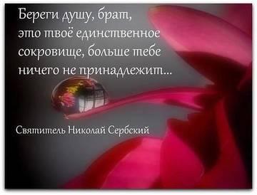 http://sg.uploads.ru/t/3FTf1.jpg