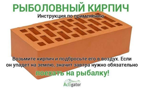 http://sg.uploads.ru/t/3JUl0.jpg