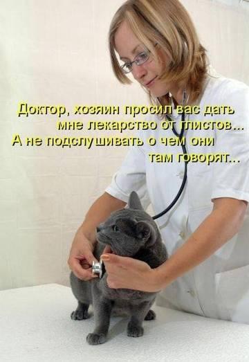 http://sg.uploads.ru/t/3kCDZ.jpg