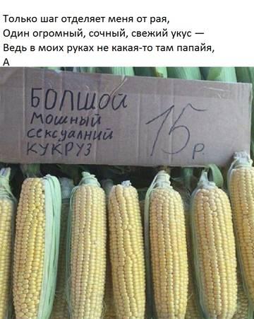 http://sg.uploads.ru/t/3oMx9.jpg