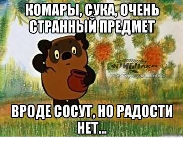 http://sg.uploads.ru/t/4IC8X.jpg