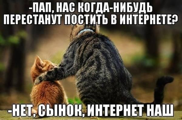 http://sg.uploads.ru/t/4aL7S.jpg