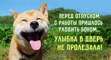 http://sg.uploads.ru/t/4eEwF.jpg