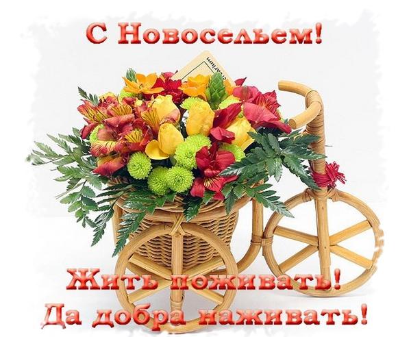 http://sg.uploads.ru/t/4qPGj.png