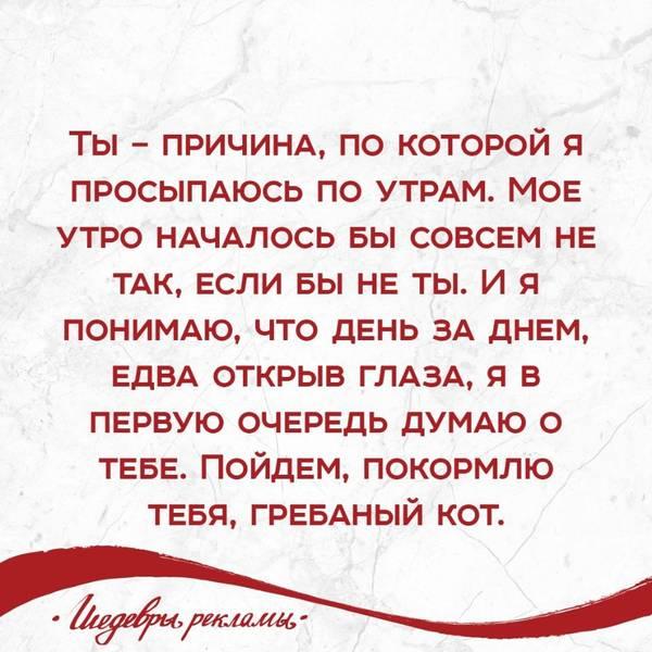 http://sg.uploads.ru/t/50QEN.jpg
