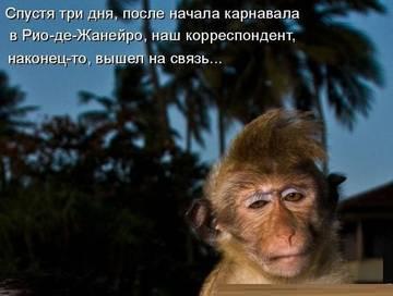 http://sg.uploads.ru/t/59nhD.jpg