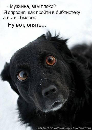 http://sg.uploads.ru/t/5rG8z.jpg