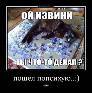 http://sg.uploads.ru/t/5tVXE.jpg