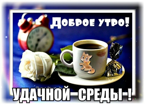 http://sg.uploads.ru/t/6Kka4.jpg