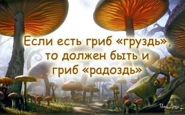 http://sg.uploads.ru/t/6P8eq.jpg
