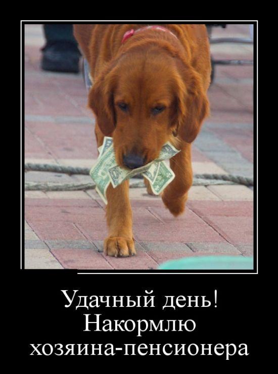 http://sg.uploads.ru/t/6Ta5G.jpg