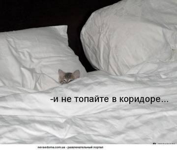 http://sg.uploads.ru/t/6WNXf.jpg
