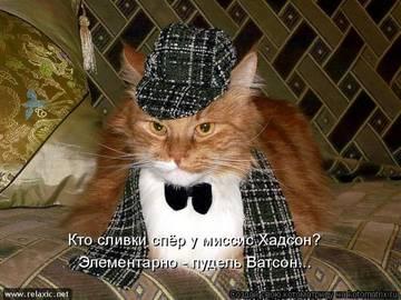 http://sg.uploads.ru/t/6rFv0.jpg