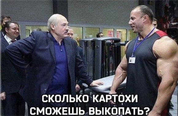 http://sg.uploads.ru/t/7fUS0.jpg