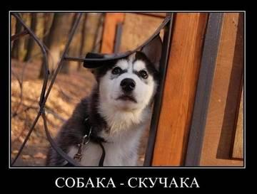 http://sg.uploads.ru/t/8J9jP.jpg