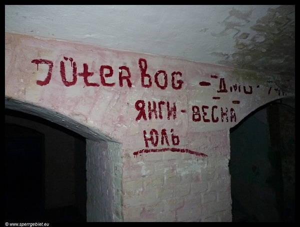 http://sg.uploads.ru/t/8Wob7.jpg