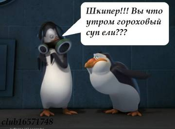 http://sg.uploads.ru/t/8c2VR.jpg