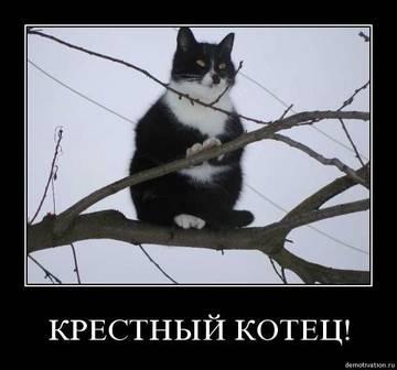 http://sg.uploads.ru/t/8sNIc.jpg