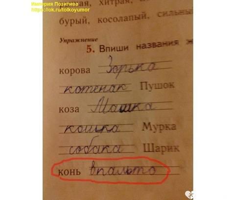 http://sg.uploads.ru/t/94pBh.jpg
