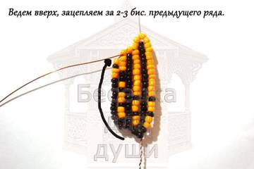 http://sg.uploads.ru/t/978bN.jpg