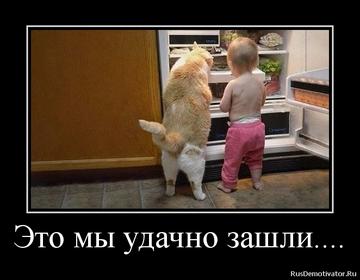 http://sg.uploads.ru/t/9eV7U.png