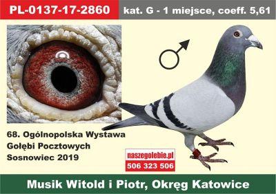 http://sg.uploads.ru/t/9rPMb.jpg