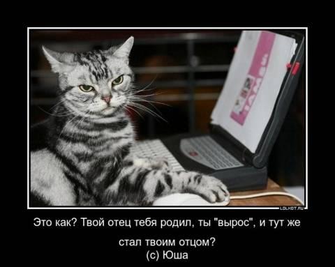 http://sg.uploads.ru/t/9sI0R.jpg