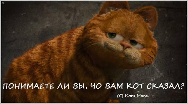 http://sg.uploads.ru/t/9wh0L.jpg