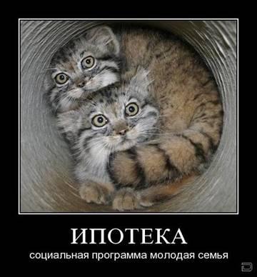 http://sg.uploads.ru/t/AC6bR.jpg
