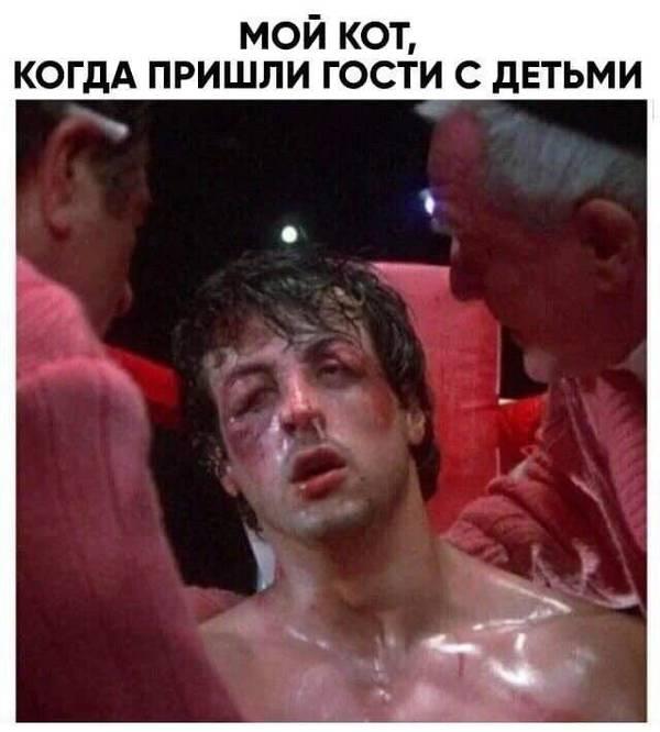 http://sg.uploads.ru/t/ADjyc.jpg