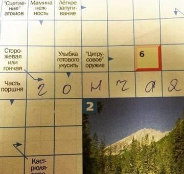 http://sg.uploads.ru/t/AFJyw.jpg